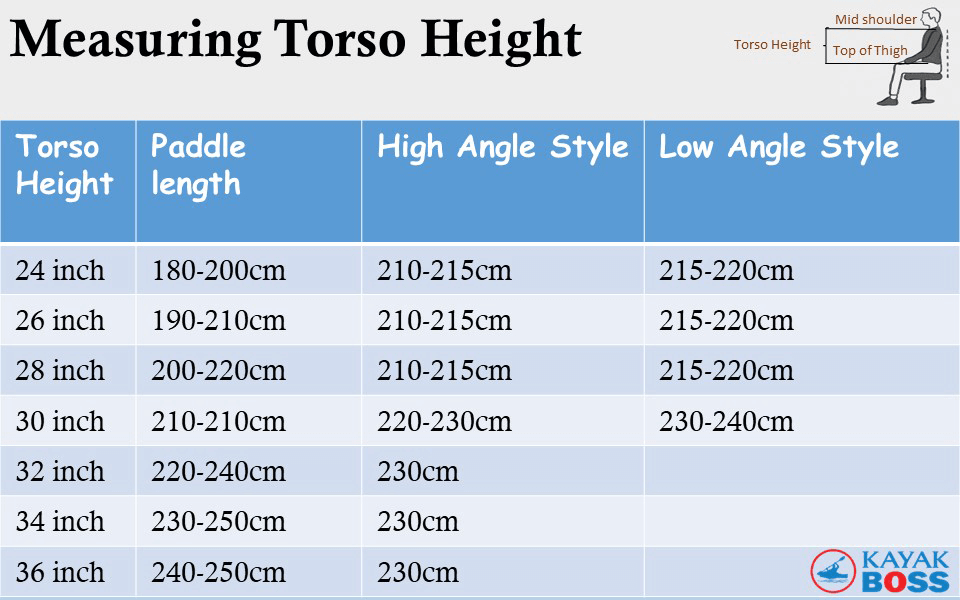 Measuring torso height for kayak selection